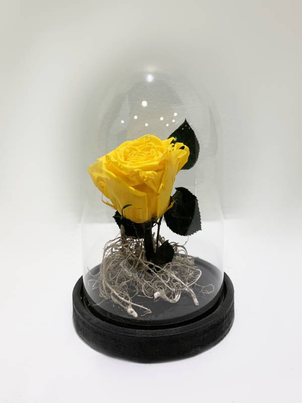 Real Yellow Forever Rose in Glass