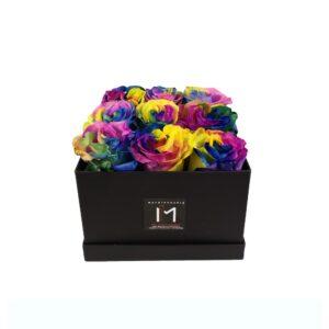 Rainbow Τριαντάφυλλα σε Μαύρο