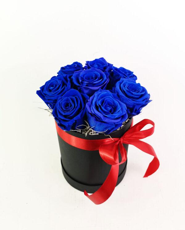 Forever Blue Box